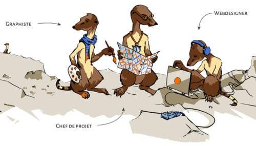 mangoustes graphiste, webdesigner et chef de projet